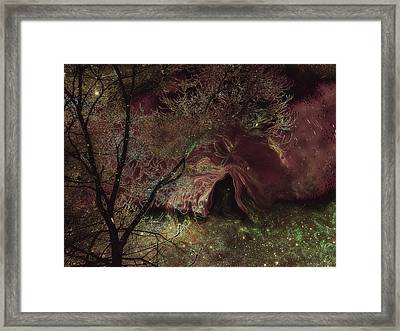 Collecting Space Framed Print by Linda Sannuti
