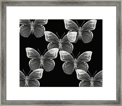 Collection Framed Print by Lourry Legarde