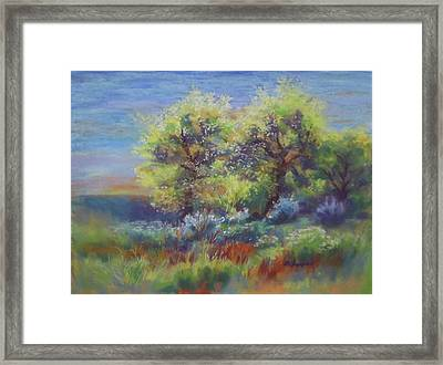 Colleen's View Framed Print