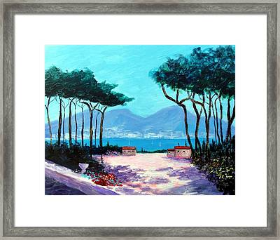 Color And Light Of The Mediterranean Framed Print by Larry Cirigliano