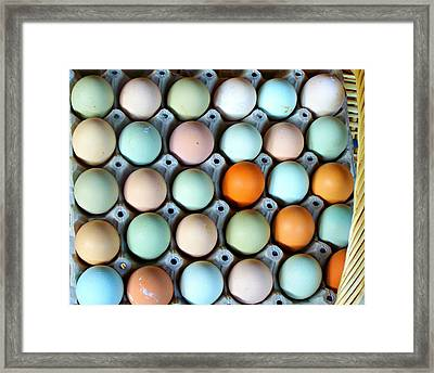 Color Eggs  Framed Print