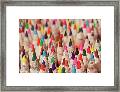 Color Forest Framed Print by Brandon Goldman