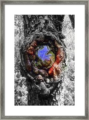Framed Print featuring the photograph Color Genesis by Christine Ricker Brandt