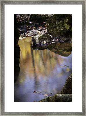 Color In The Water Framed Print by Rob Travis