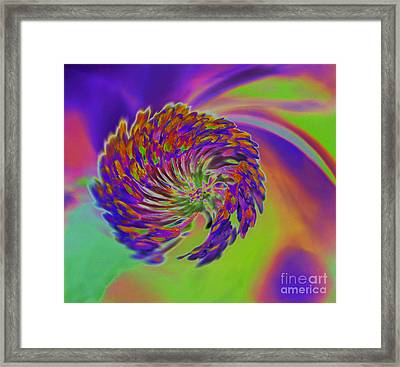 Framed Print featuring the photograph Color Splash by Cindy Manero