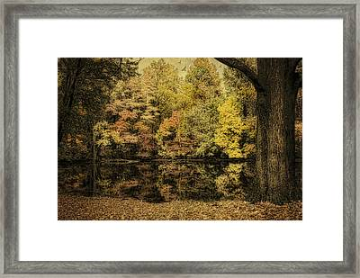 Framed Print featuring the photograph Color Splash by Mary Timman