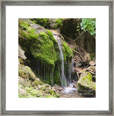 Framed Print featuring the photograph Colorado 2 by Deniece Platt