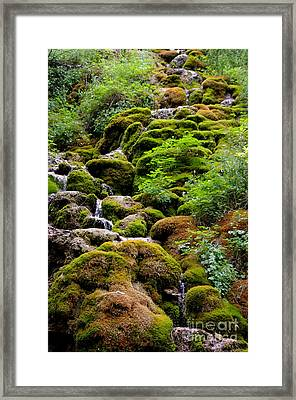 Framed Print featuring the photograph Colorado 3 by Deniece Platt