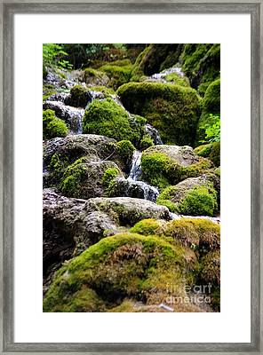 Framed Print featuring the photograph Colorado 5 by Deniece Platt