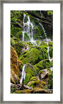 Framed Print featuring the photograph Colorado 6 by Deniece Platt