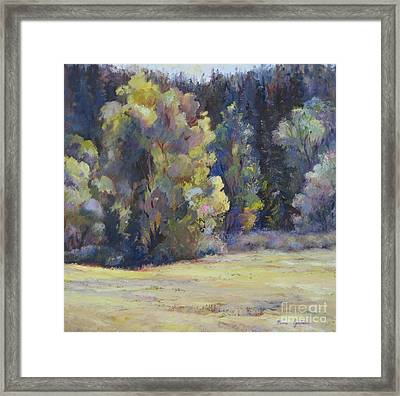 Colorado Colors Framed Print