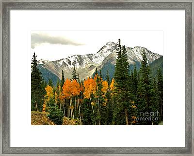 Colorado Colors Framed Print by Marilyn Smith