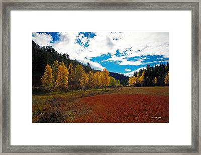Colorado Mountain Autumn View Framed Print by Stephen  Johnson