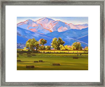 Colorado Pasture Framed Print