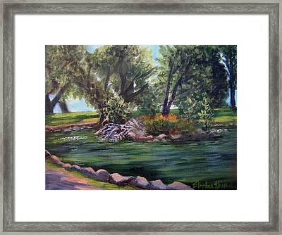 Colorado Pond Framed Print by Stephen  Hanson