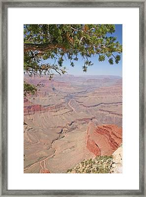 Colorado River Grand Canyon National Park Usa Arizona Framed Print by Audrey Campion