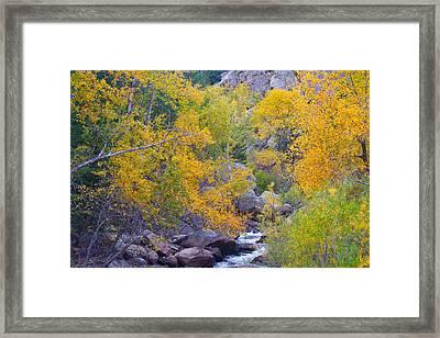 Colorado Rocky Mountain Autumn Canyon View Framed Print