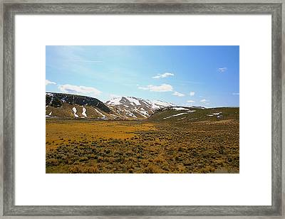 Colorado Spring Time Framed Print