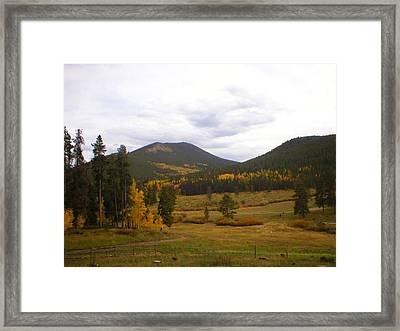 Colorado Trails In Autumn Framed Print