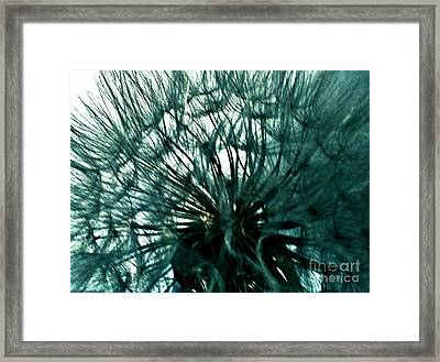 Colored Pod Flower Abstract Framed Print by Marsha Heiken