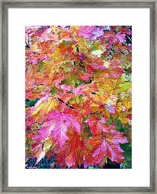 Colorful Autumn Framed Print by Sergey and Svetlana Nassyrov