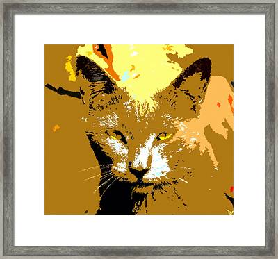 Colorful Cat Framed Print by David Lee Thompson