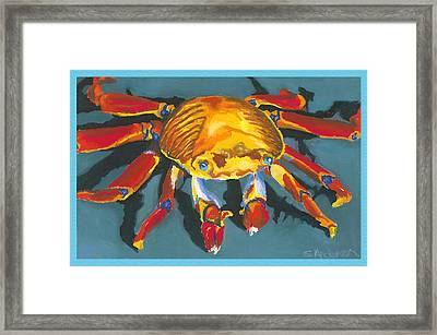 Colorful Crab With Border Framed Print by Stephen Anderson