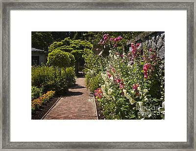 Colorful Flower Garden Framed Print