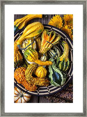 Colorful Gourds In Basket Framed Print by Garry Gay