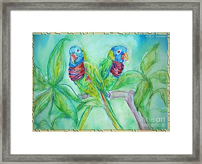 Colorful Lorikeet Couple Framed Print by M C Sturman