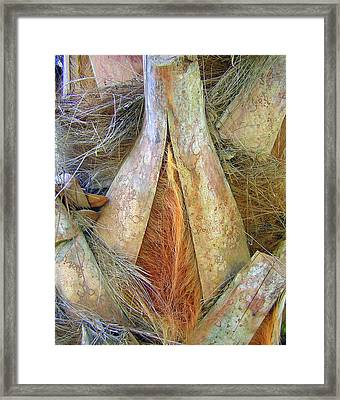 Colorful Palm Tree Trunk Abstract Framed Print