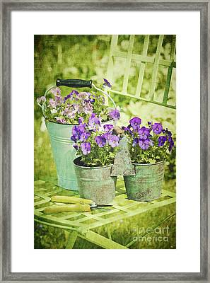 Colorful Spring Flowers On Garden Chair Framed Print by Sandra Cunningham