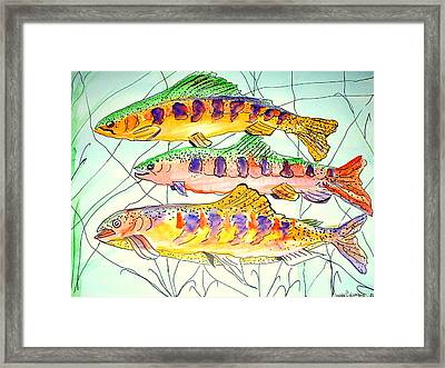 Colorful Trout Framed Print by Janna Columbus