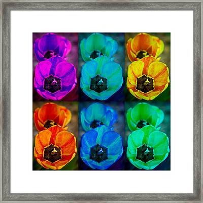 Colorful Tulip Collage Framed Print by James BO  Insogna