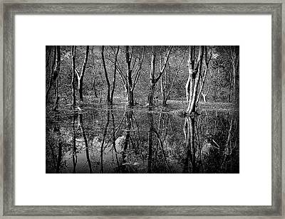 Colorless Serenity Framed Print by Greg Palmer