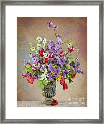 Framed Print featuring the photograph Colors Of Spring by Cheryl Davis