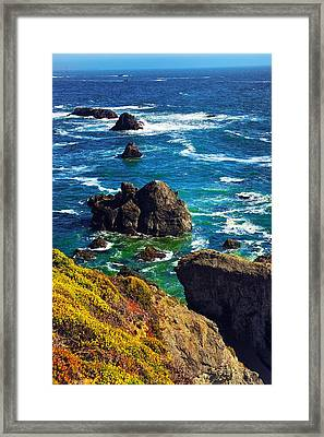 Colors Of The Pacific Framed Print