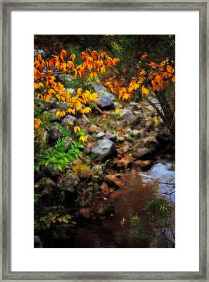 Colors On The Creek Framed Print by Toni Hopper