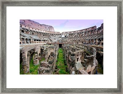 Colosseum Framed Print by Luiz Felipe Castro