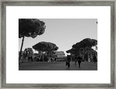 Colosseum Framed Print by Marcel Krasner