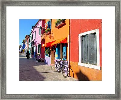 Colour Framed Print by Barbara Walsh