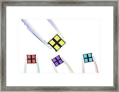 Coloured Microchips Framed Print by Gombert, Sigrid