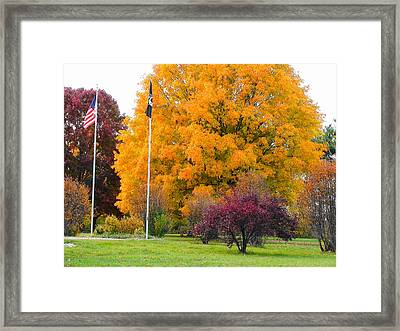 Colours Of Fall Framed Print