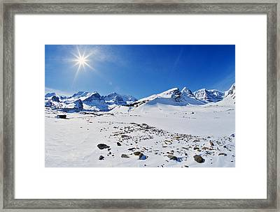 Columbia Icefield In Winter, Jasper Framed Print by Darwin Wiggett