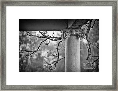Column In Spring Framed Print by Susan Isakson