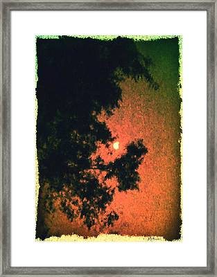 Come Evening Framed Print by Brian D Meredith