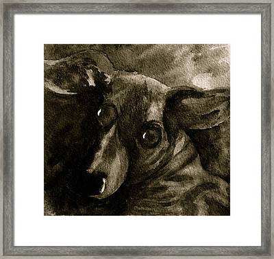 Come In Black And White Version Framed Print by Beverley Harper Tinsley