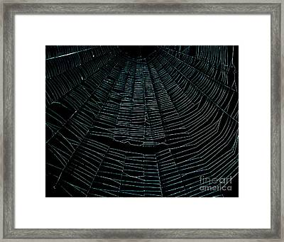 Come Into My Web Framed Print by Monica Poole