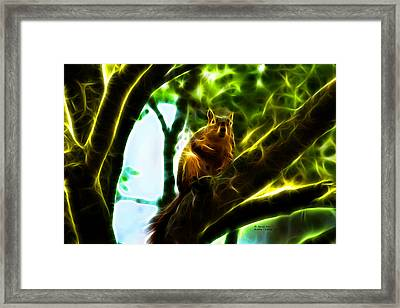 Come On Up - Fractal - Robbie The Squirrel Framed Print