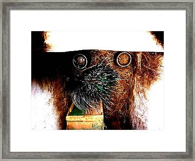 Comic Dog Framed Print by ThiART ThiART